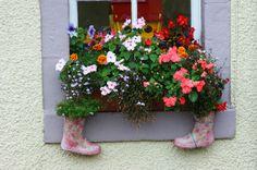 shoes as pots