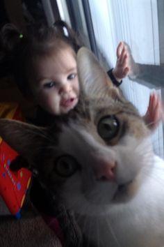 De entre sus muchas habilidades para encandilar a internet, los gatos pueden presumir de ser unos maestros en el arte del photobomb. Reventar fotos es más divertido si hay un gato de por medio, como p...