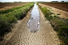 Ask your accountant: Drought-Stricken Farmers and Ranchers Have More Ti...