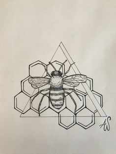 Drawings To Trace, Art Drawings, Drawing Art, Honey Bee Tattoo, Bumble Bee Tattoo, Dibujos Tattoo, Desenho Tattoo, Bee Honeycomb, Tattoos