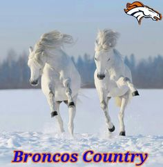 I do love my Broncos :)