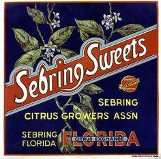 Florida FL Sebring Sweets Orange Citrus Fruit Crate Box Label Art Print