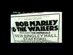 Bob-Marley.es » BOB TV