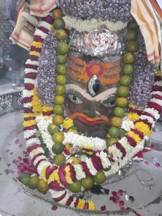 Mahakal Darshan महाकाल दर्शन । 18 फ़रवरी 2017