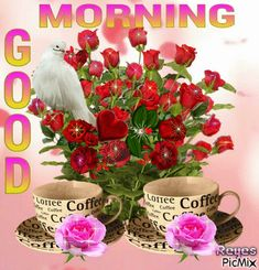 Are you searching for inspiration for good morning handsome?Check this out for cool good morning handsome ideas. These enjoyable images will you laugh. Good Morning Rose Gif, Gud Morning Images, Good Morning Beautiful Pictures, Good Morning My Friend, Good Morning Inspiration, Good Morning Cards, Cute Good Morning, Good Morning Picture, Good Morning Flowers