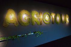 installazione AgrieTour 2014