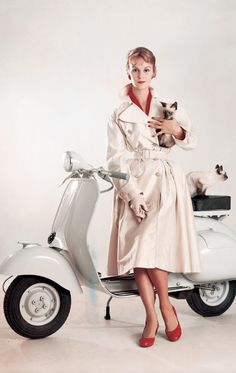 Mod on a Vespa with kittens. (ie girlfriend material)