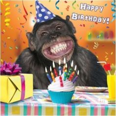 £3.29 GBP - 3D Holographic Chimp Happy Birthday Card Square Greeting Cards #ebay #Home & Garden