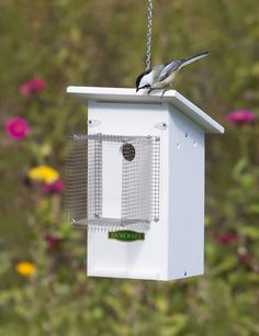 Fly Catcher Bird House with Noel Guard -  A barrier that protrudes 4-3/4 inches from the entrance hole, protects nestlings from intruders, and provides them the security to care completely for their families until the nestlings successfully fledge the nest.