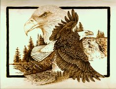 """The Sentinel - 11"""" x 14"""" - Pyrography of Bald Eagle - Wood burned on birch plywood - SOLD"""