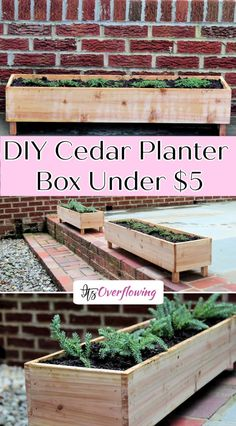 Best Indoor Garden Ideas for 2020 The number of internet users who are looking for… Hanging Planter Boxes, Diy Wood Planters, Cedar Planter Box, Garden Planter Boxes, Fence Planters, Window Planter Boxes, Balcony Planter Box, Diy Garden Box, Wooden Planter Boxes Diy