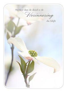 Sterker dan de dood, is de herinnering die blijft. #Hallmark #HallmarkNL #moeilijke #momenten #herinnering