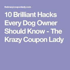 10 Brilliant Hacks Every Dog Owner Should Know - The Krazy Coupon Lady