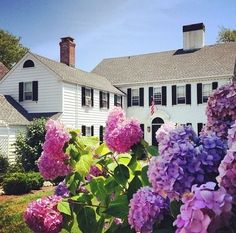 Gorgeous ~ All Things Girly & Beautiful; My Dream Home Home Building Design, House Design, Hydrangea Colors, Purple Hydrangeas, Little White House, Backyard Paradise, Space Place, Take Me Home, White Houses