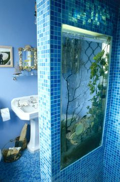 """""""Aquariums Are Nice...but not when they're in a divinding wall in your bathroom"""", they say.  If l could, l would do it anyway, lol!"""
