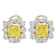 Fancy Intense Yellow Diamond & White Diamond Cluster Earrings