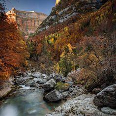 Bonita foto desde el puente los Bucardos.  #total_mountains #loves_pyrenees #pineta #huesca #ordesa #pyrenees #pirineos #montaña #casabiescas #gavin #rinconesdelpirineo #pirineoaragones #invierno #autumn #puravida #winteriscoming #instagood #fit #dream #running #turismoaragon #momentosmagicos #momentosfelices #olympustours #instalife #biescas  #valledetena #live #instapirineos #mountain #senderos #senderismo