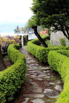 George's garden - Lake Como, Italy.