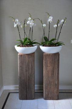 mooie schalen met orchidee op stoere zuilen #iloveit! #Pintratuin