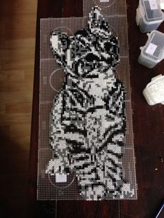 Cat hama perler beads by Dorte Marker - Pattern: https://www.pinterest.com/pin/374291419007212749/