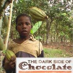 """""""The Dark Side of Chocolate' is a documentary about the continued allegations of trafficking of children and child labor in the international chocolate industry. While we enjoy the sweet taste of chocolate, the reality is strikingly different for African children."""" www.thedarksideofchocolate.org  No matter what time of the year it is, I challenge you to only purchase certified fair trade cocoa products. www.fairtrade.net/cocoa"""