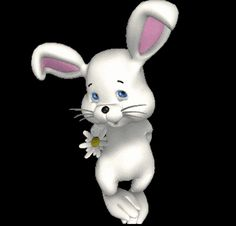 everyday a different color, beautiful gifs, soft goth, nature. images that I like and attract my attention. I hope you'll find images here for your taste too. Easter Quotes Images, Easter Pictures, Cute Pictures, Rabbit Illustration, Funny Illustration, Foxy Plush, Animated Emoticons, Gif Photo, White Rabbits
