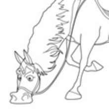 The Learning Site: Coloring Pages - Body Parts | Preschool body ...