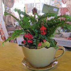 Oversized tea cup holds a miniature garden