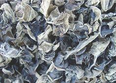 4 Pound (1816 grams)Black Fungus Mushroom Woodear Premium Grade #JOHNLEEMUSHROOMRESELLER