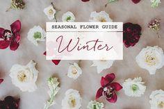 Winter Flower Guide