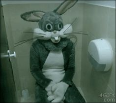 And the overly friendly rabbit. | The 26 Scariest GIFs You Will Ever See