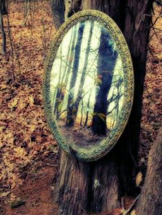 I have been toying with the idea of outdoor mirrors to add a magickal quality to our forest.