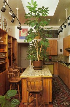Interior Design and Architecture : Photo - Sunset Books, Decorating with Plants 1980