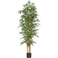 Floral D cor 4959: Nearly Natural 5254 - 75 Bamboo Silk Tree - Green -> BUY IT NOW ONLY: $101.23 on eBay!