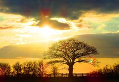 Wiltshire sunset photograph, British photography, Landscape photography by ByGaddArtandDesign on Etsy