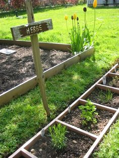 Why not just recycle an old ladder.  Don't even dig it in. rest it on the surface as a raised garden & fill each section with compost & manure, then mulch the plants in.