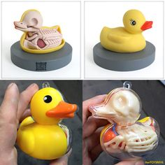 Rubber Ducky Anatomical & New Balloon Dog Anatomy Colorways from Jason Freeny Dog Anatomy, Anatomy Art, Anatomy Sculpture, Sculpture Art, Balloon Dog, Toy Art, Vinyl Toys, Skull Tattoos, Designer Toys