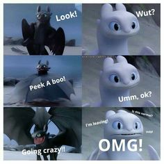 Light Fury's reaction to Toothless - How To Train Your Dragon 3 Trailer Dragons Le Film, Dragons 3, Toothless And Stitch, Toothless Dragon, Funny Animal Memes, Funny Jokes, Funny Animals, Hilarious, How To Train Dragon