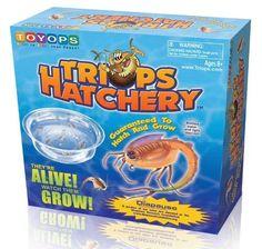 Toyops Triops Hatchery - http://www.tutorfrog.com/toyops-triops-hatchery-2/  #Toys #Coolproducts #Bestsellers
