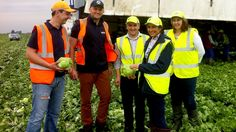 Anna Hill meets salad pickers from Eastern Europe at one of the UK's biggest salad growers