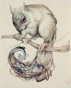 Marco mazzoni colored pencil and ink