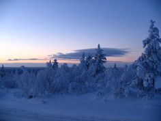 Is Finland not the most amazing place on the planet? Winter wonderland in northern Finland, Saariselkä
