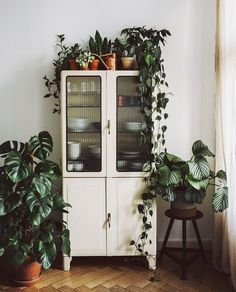 We have a tiny kitchen so we need to store of our kitchenware in the living room. We have a tiny kitchen so we need to store of our kitchenware in the living room. Vintage Kitchen Cabinets, Vintage Kitchen Decor, Vintage Garden Decor, Metal Wall Decor, Hanging Plants, Plants Indoor, Indoor Outdoor, Indoor Gardening, Outdoor Living