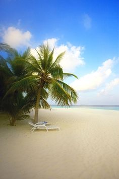 Sun Island Beach – Maldives