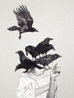 The Crows Art Print by Jenny Liz Rome