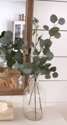 Eucalyptus stems: best purchase location at Walmart Decor, Home Decor Inspiration, Home Living Room, Fake Plants Decor, Living Room Decor, Home Decor, Apartment Decor, Home Deco, Vases Decor