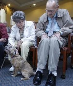 Seniors at Atria Draper Place got a chance to brighten up the dog days of summer yesterday, watching some pups jump hurdles, do tricks and come by to be patted