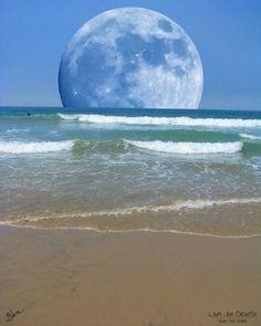 Beach Moon by tamara
