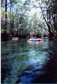Ichetucknee River and Springs in Florida State Park Florida Springs, Blue Hole, Best Swimming, Florida Travel, Vacation Ideas, State Parks, Wander, Places To Go, Paradise