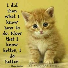 True saying.. Love the kitty too :)